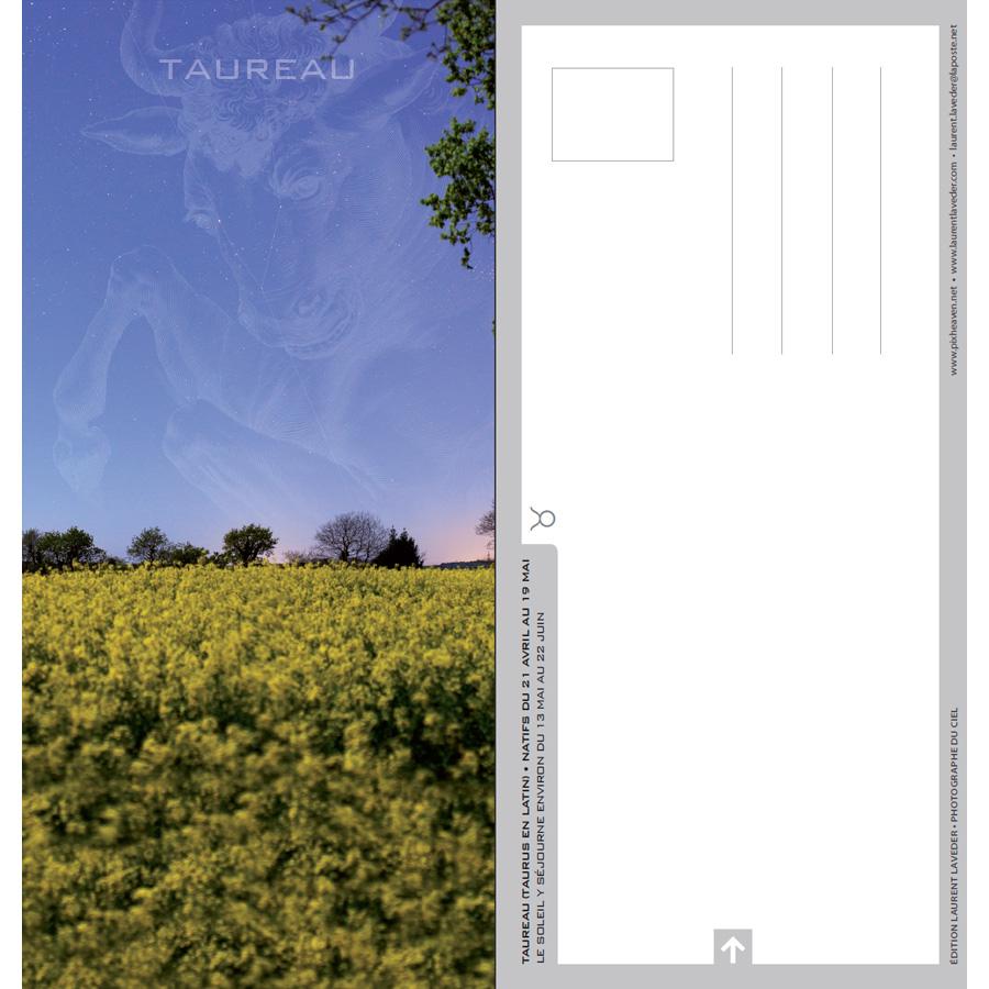 """Carte postale """"Constellation du zodiaque : Le Taureau"""""""