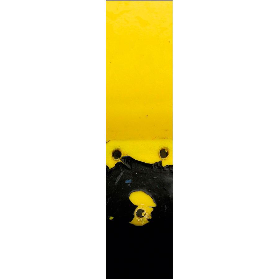 """Photo panoramique 16 x 66 """"Bonhomme jaune et noir"""""""