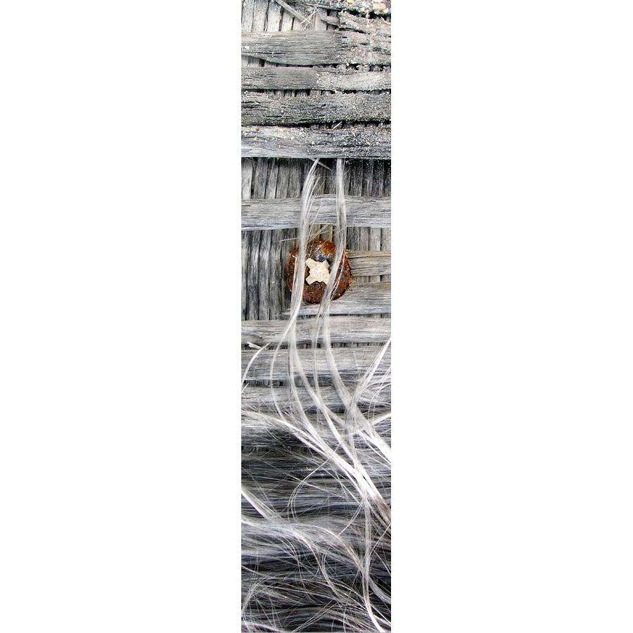 "Photo panoramique 16 x 66 ""Cheveu"""
