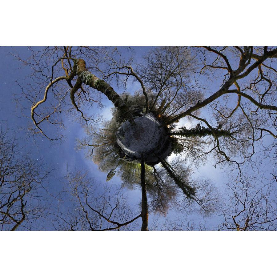 Huelgoat : La forêt version petite planète