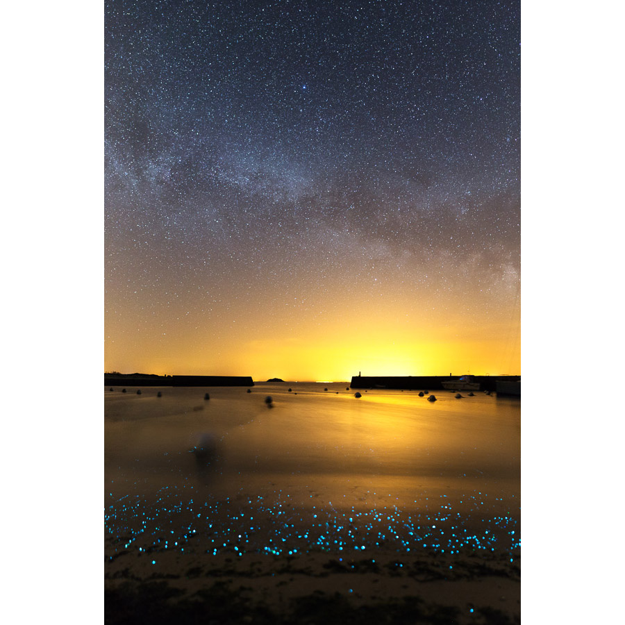 Île d'Hoëdic : Planctons phosphorescents