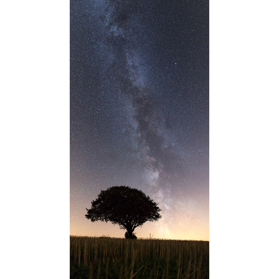"""Photo """"Plonévez-du-Faou : La Voie lactée et un arbre"""""""