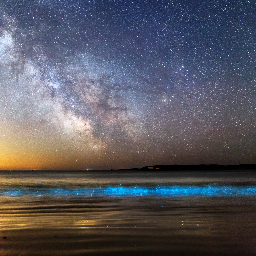 Île d'Houat : Plancton phosphorescent