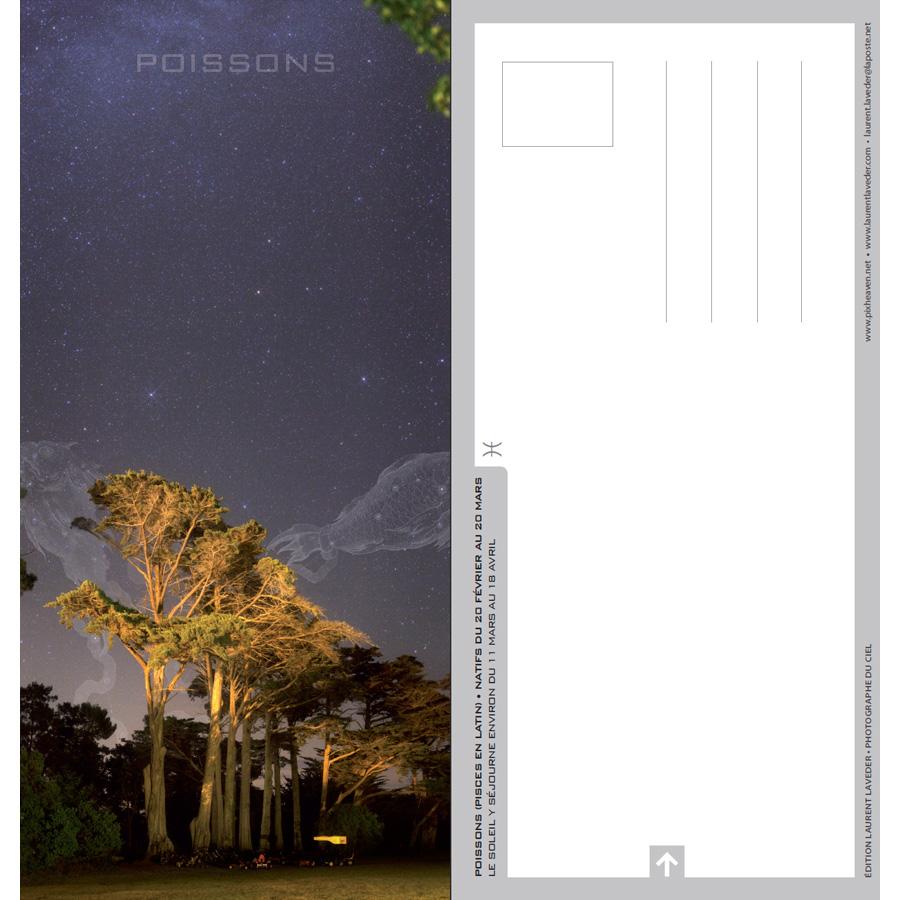 """Carte postale """"Constellation du zodiaque : les Poissons"""""""
