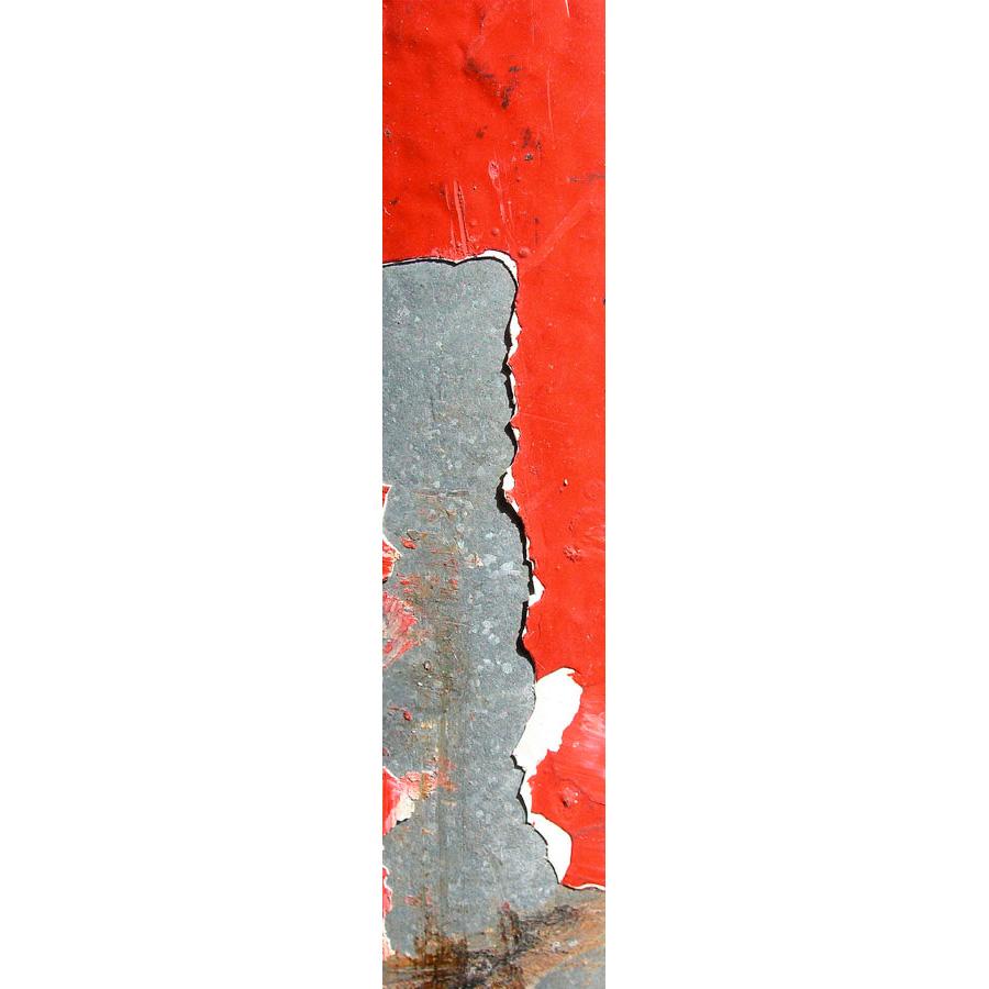 """Photo panoramique 16 x 66 """"Colonne rouge écaille"""""""