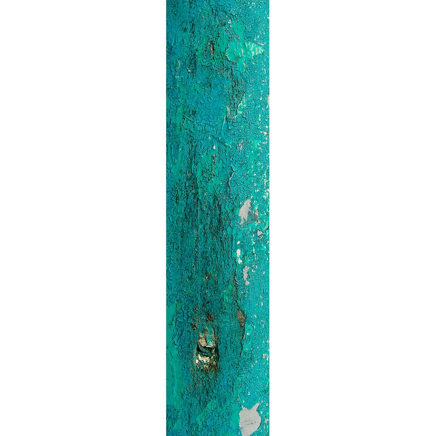 "Photo panoramique 16 x 66 ""Écaille turquoise"""