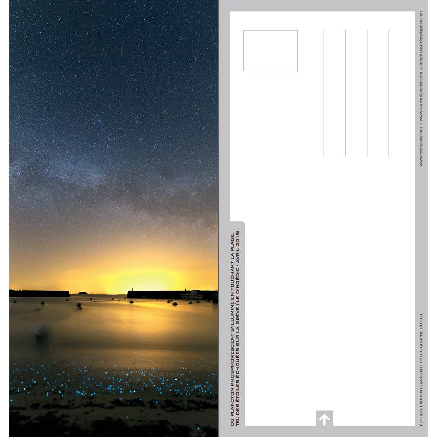 """Carte postale """"Planctons phosphorescents à Hoëdic"""""""