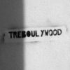 "Photo ""Tréboulywood"""