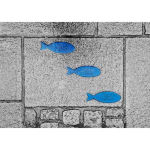 """Photo à encadrer Brèves de rue """"Trois poissons bleus"""""""