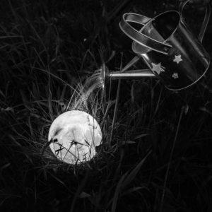 """Photo à encadrer Lune sous un nouveau jour """"La Lune sous un arrosoir"""""""