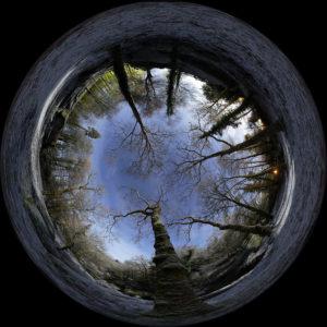 """Photo 20x20 cm à encadrer """"Huelgoat : la forêt"""""""